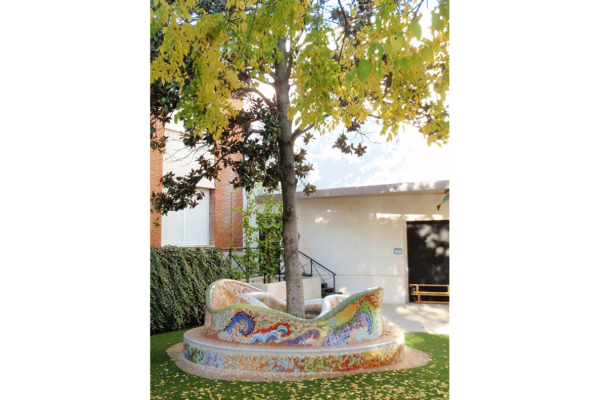 Bench and tree surround, 4m diameter, Colegio Alameda de Osuna, Madrid.