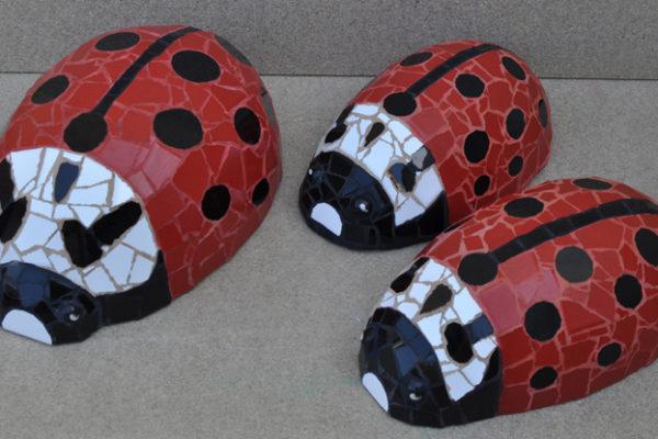 Ladybug, 30cm x 15cm, 5kg.