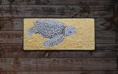 'Tom the Turtle' Mosaic