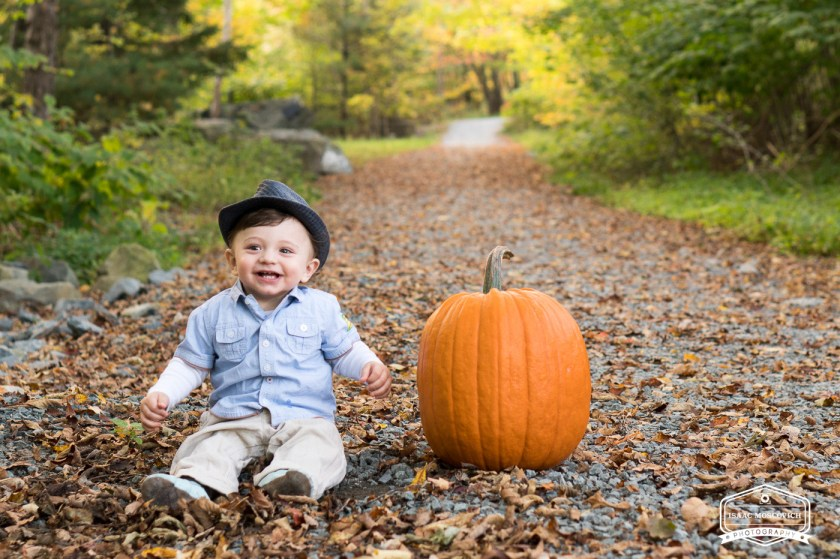 Small kid Fall Photo Shoot