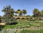 Park Güell Austrian Gardens