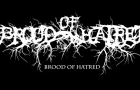 100-Word Review: Brood of Hatred – Skinless Agony