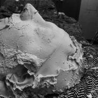Abhorrent Decimation plaster cast