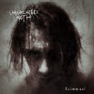 immolated-moth-this-broken-mind