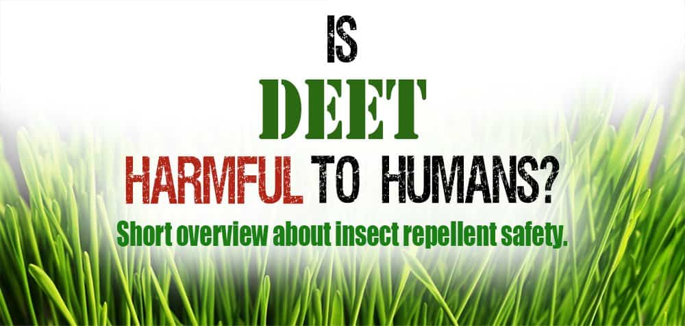 Image result for deet dangers