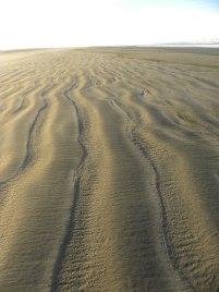 Beach walk 028
