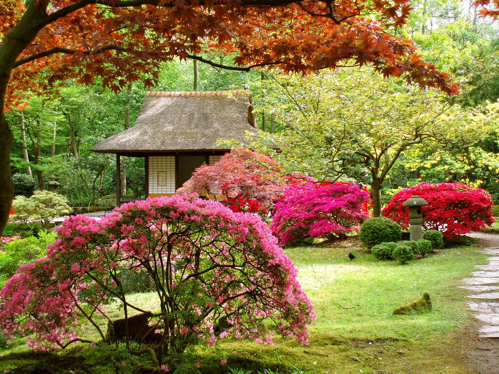 beautiful gardens 20