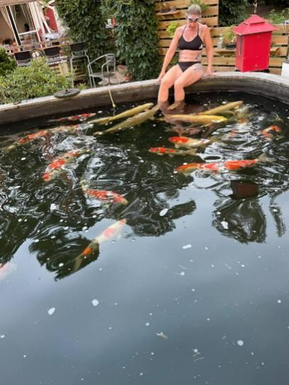 Inte lätt att få plats när man ska i dammen. Man är välkommen i alla fall.