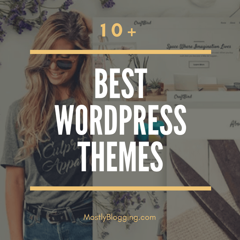 10 of the best premium WordPress themes for your blog or website.