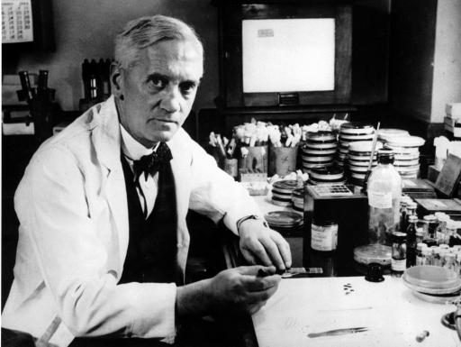 Alexander Fleming with his many petri dishes of microbial pals. By Calibuon at en.wikibooks, from Wikimedia Commons