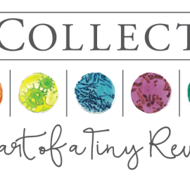 7 ways The BioCollective Will Accelerate Microbiome Research and Change Medicine