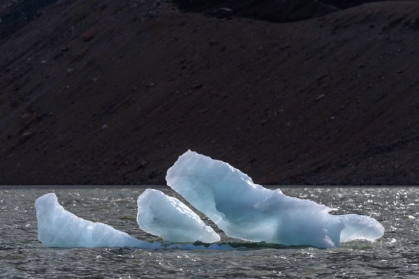 Iceberg on the laguna