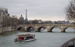 Pont Neuf Bridge in Paris