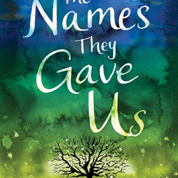 Waiting on Wednesday | The Names They Gave Us | Emery Lord