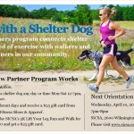 Run with a Shelter Dog