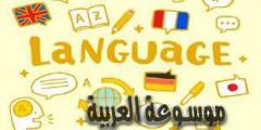 مفهوم اللغة الرسمية للدول