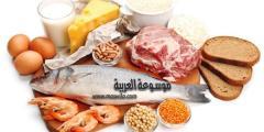 اهمية تناول مكملات غذائية تتضمن فيتامين B12