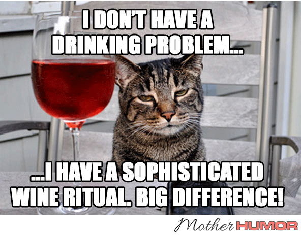 funny cat wine meme