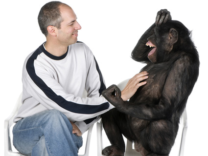 Image result for chimp and man