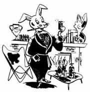 original playboy rabbit art paul