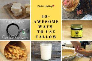 10+ Awesome Ways to Use Tallow [Round Up]