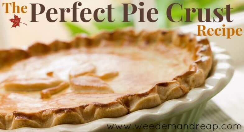 Close up of a beautiful pie crust in a white ceramic pie pan.