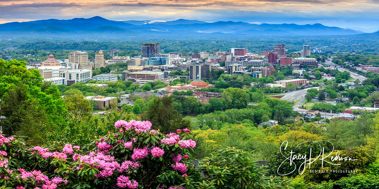 Asheville cityscape with mountains surrounding and a rhododendren in the foreground. Photo by Stacy Redmon of Red Rock Photography.