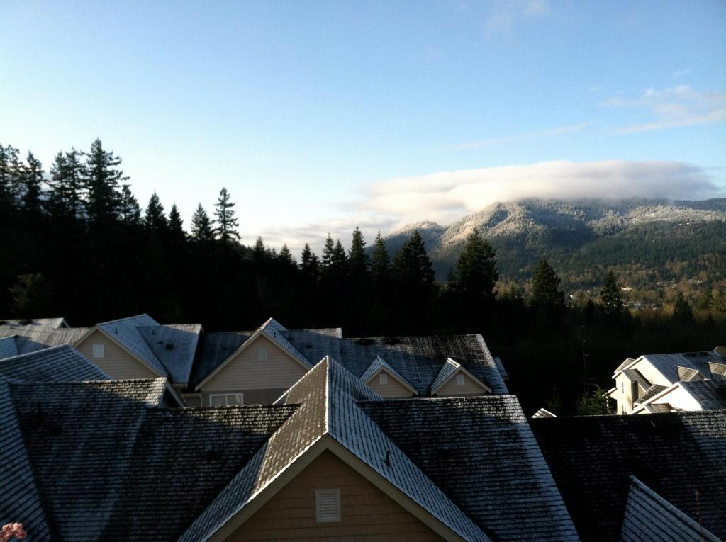 view of evergreen trees and mountains overlooking rooftops on sunny day