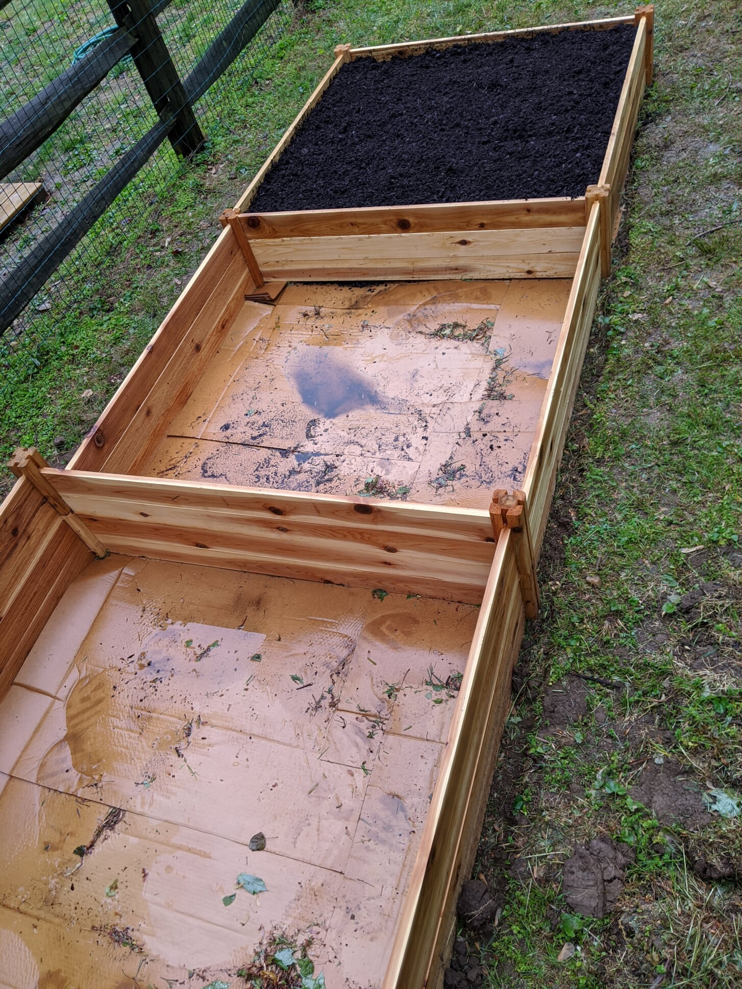 cardboard weed barrier for square foot garden in rain