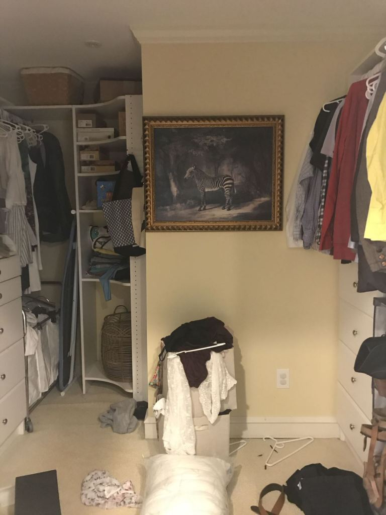 messy walk in closet with zebra painting