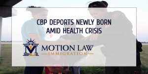CBP deported newly born American citizens