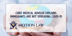 Expert: Immigrants not linked to massive COVID-19 outbreak