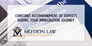Start your immigration journey with the help of experts