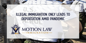 Avoid ilegal immigration, instead, get the proper guidance