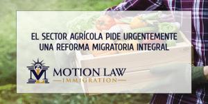 Retrasos en procesamiento de visas afecta tremendamente el sector agrícola
