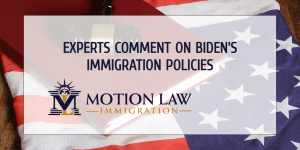 Experts comment on the incoming government's immigration proposals