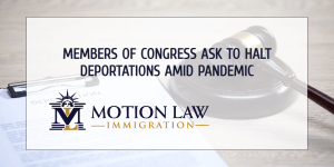 Congressmen send letter to DHS to halt deportations amid health crisis