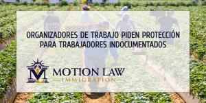 Organizadores de trabajo quieren ofrecer acción diferida a trabajadores indocumentados