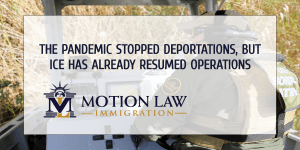 ICE has detained and deported almost 2000 undocumented immigrants in recent months