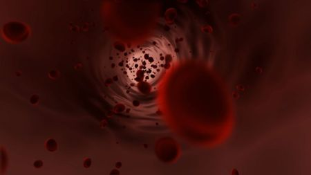 Red Blood Cells flowing through the vein footage