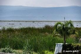 Lago de Chapala with a low water level seen from El Palmar Restaurante