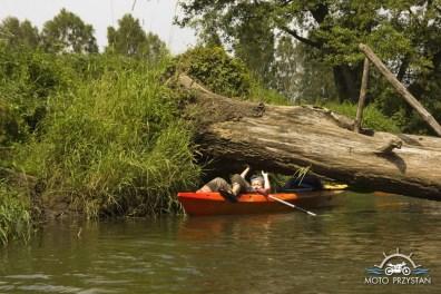 Przeszkody na rzece Rawce