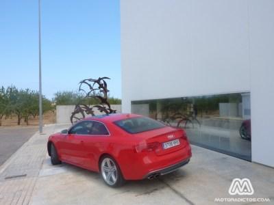 Audi-S5-MotorAdictos (4)