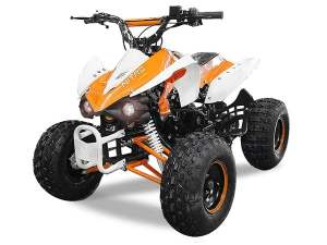 MINIQUAD MINI QUAD PANTHERA RG8