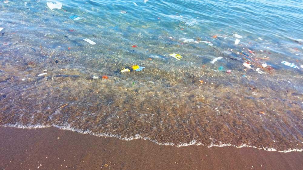 Deniz Kirliliği - Mavi kart uygulaması