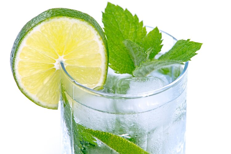 water, lime and mint - motorcycle touring hydration