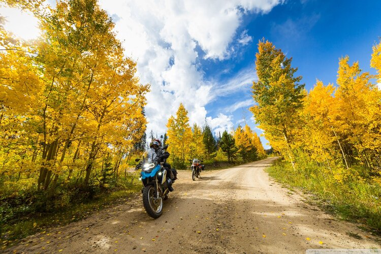 bikers riding trails on bmw's - adventure motorcycling