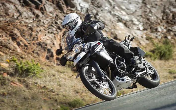 triumph motorcycle rider