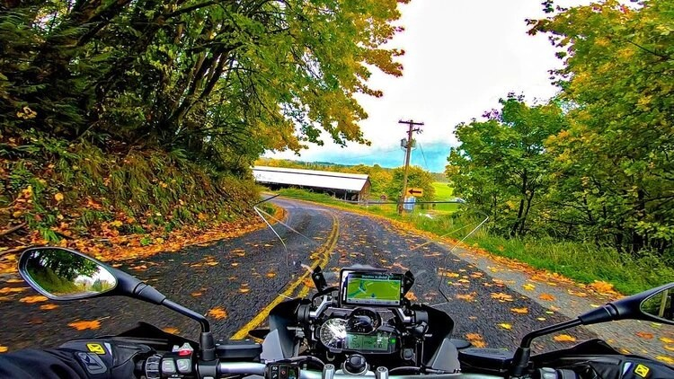 motorcycle on leaf-covered road