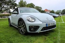 beetle dune 2015 (1)
